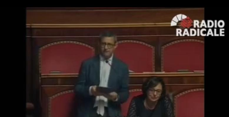 """Gay. Lo Giudice (PD): """"Corte Appello Napoli chiede trascrizione del matrimonio tra due donne francesi. La legge italiana non tiene più il passo"""""""