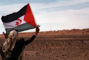 Sahara  Occidentale, Il muro.Western Sahara, The wall